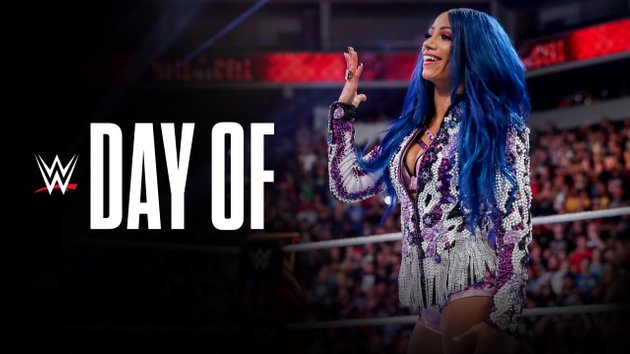 Watch WWE Day Of WWE in Mexico City 1/9/20