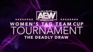 Watch Night 1 – AEW Womens Tag Team Cup Tournament 2020 8/3/20 – 3 August 2020